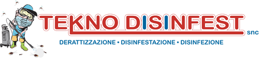 logo2xteknodisinfest